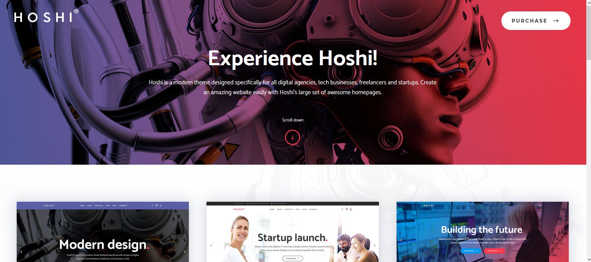 Best WordPress Themes for Freelancers